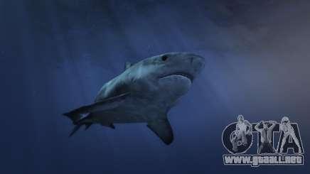 Cómo encontrar un tiburón en GTA 5