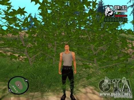 Realidad perfecta para GTA San Andreas