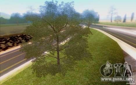 Behind Space Of Realities 2013 para GTA San Andreas novena de pantalla