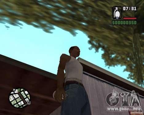 Estofado de explosivo para GTA San Andreas