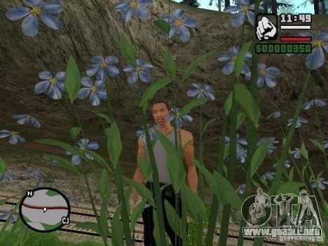 Realidad perfecta para GTA San Andreas segunda pantalla