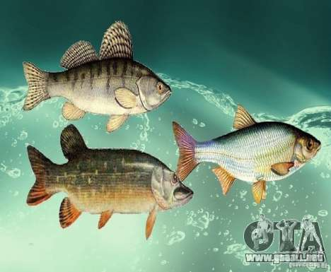 Nuevos peces (agua dulce) para GTA San Andreas