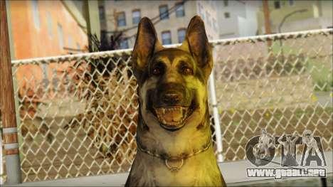 Dog Skin v1 para GTA San Andreas tercera pantalla