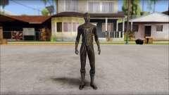 Standart Black Spider Man