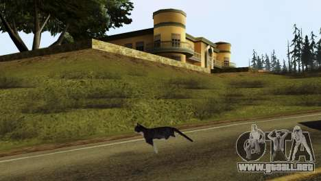 La posibilidad de GTA V para jugar para los anim para GTA San Andreas sucesivamente de pantalla