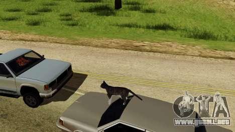 La posibilidad de GTA V para jugar para los anim para GTA San Andreas quinta pantalla