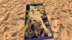 La playa de las esteras con los gatitos para GTA San Andreas