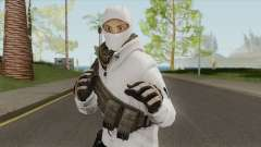 Arctic Leet Skin V3 (Counter-Strike Online 2) para GTA San Andreas